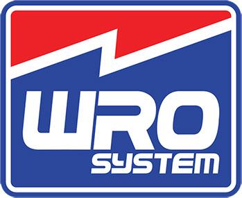 Logo Wrosystem