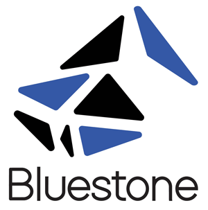 Logo Bluestone Poland